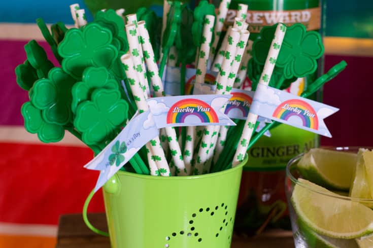 Free St. Patrick's Day Printables - Lucky You!
