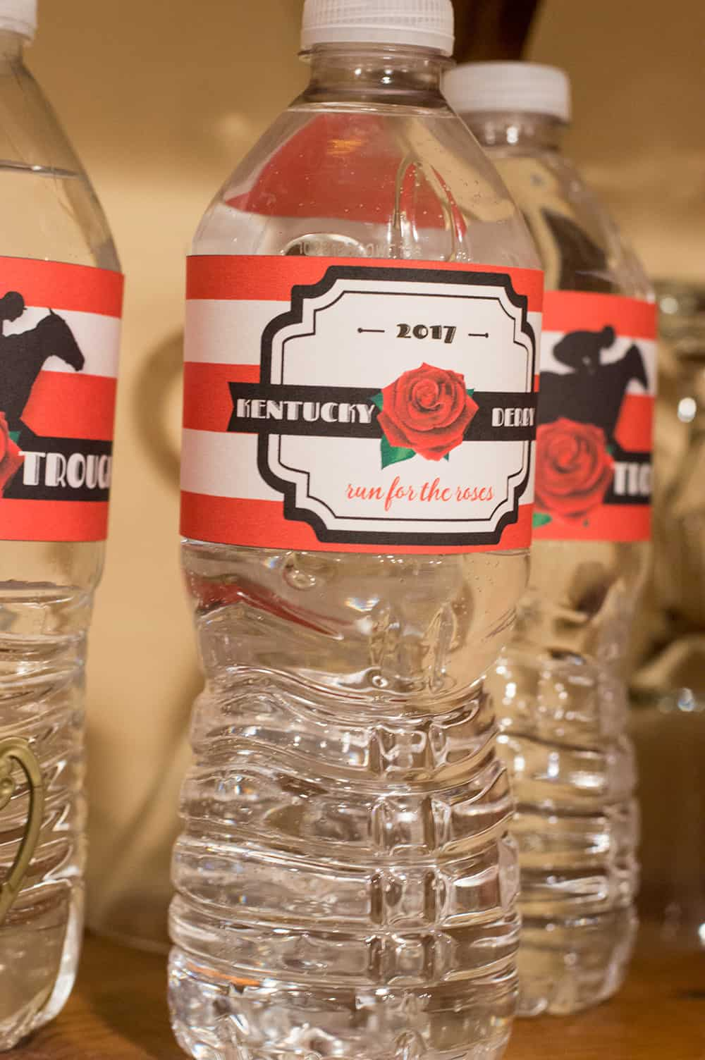 Kentucky Derby Party Water Bottle Labels | Free Printable from Elva M Design Studio, now updated to use any year