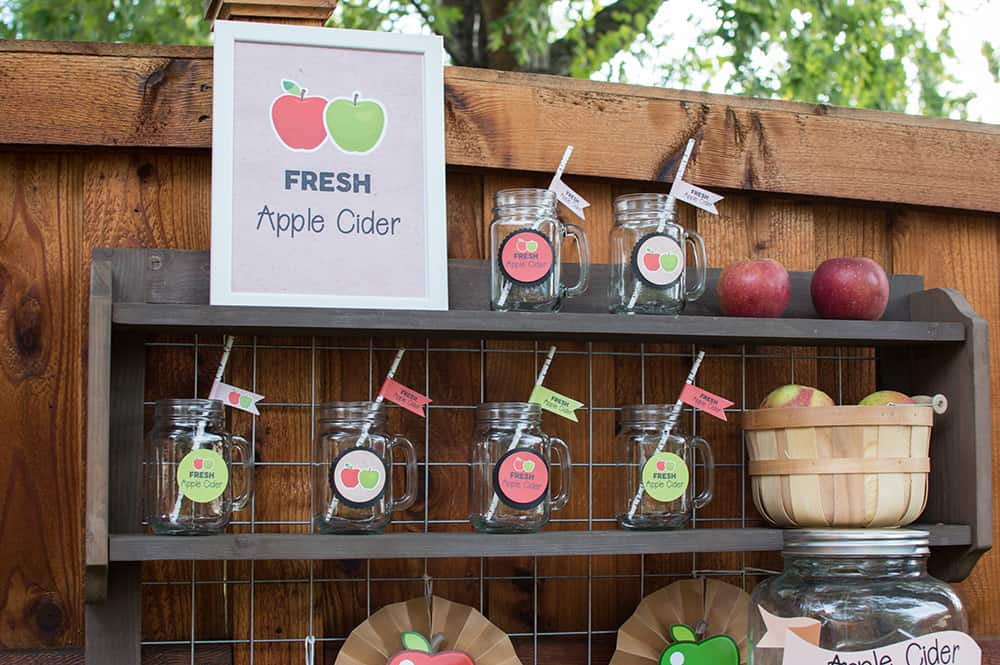 Apple Cider Bar Decorations