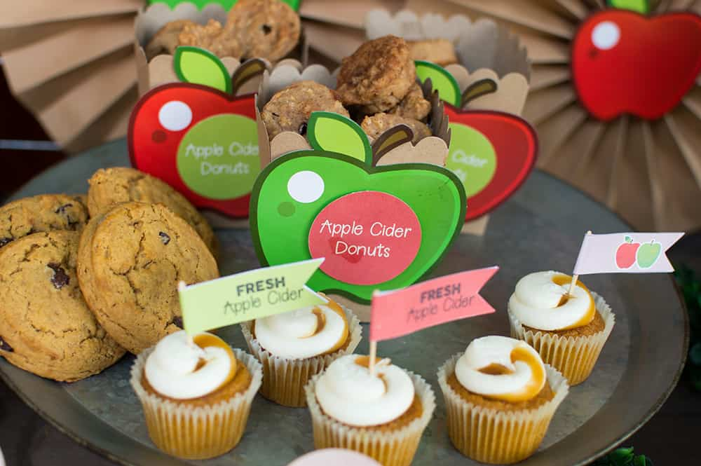 Fall Apple Cider Bar Desserts