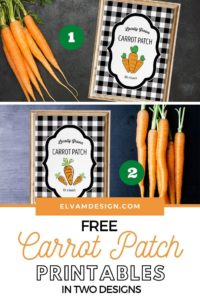 Free Carrot Patch printable in two designs