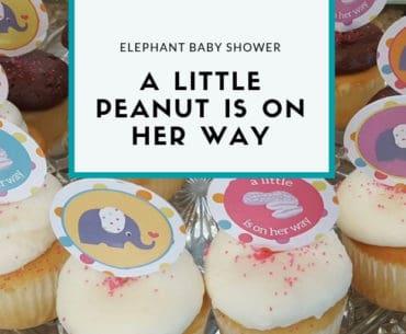 Elephant baby shower ideas from elvamdesign.com