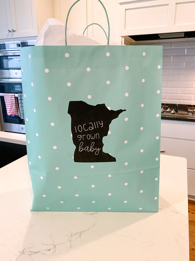 virtual baby shower care package gift bag decorations