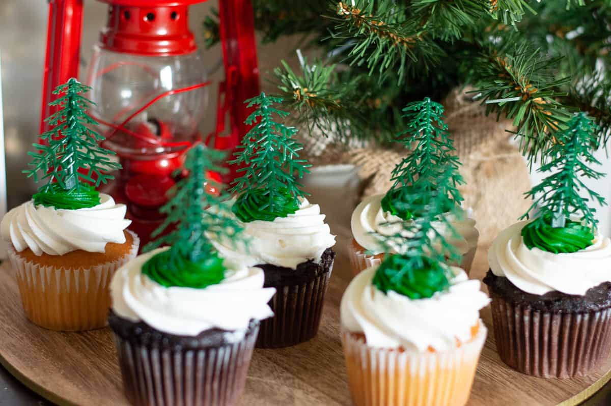 Lumberjack cupcakes with little tree toppers