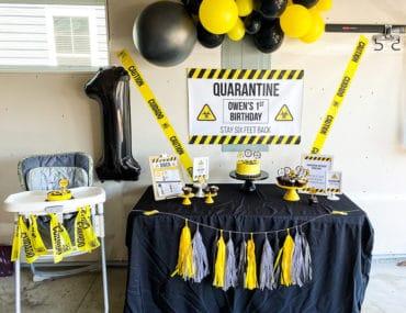 Quarantine First Birthday Party