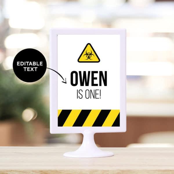 Quarantine Birthday Editable Sign