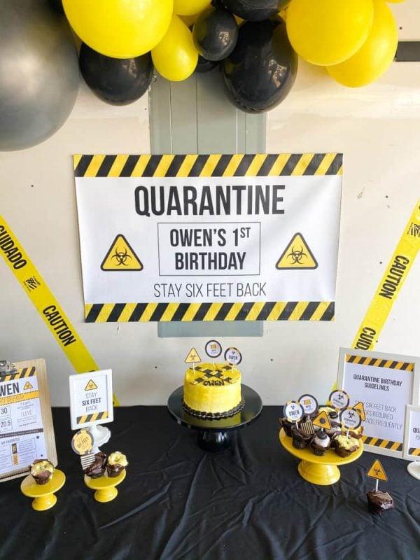 Quarantine Party Backdrop
